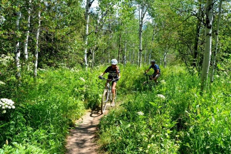 Mountain bikers in Vail, CO