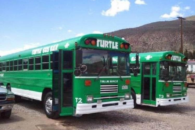 Turtle bus transportation in Colorado