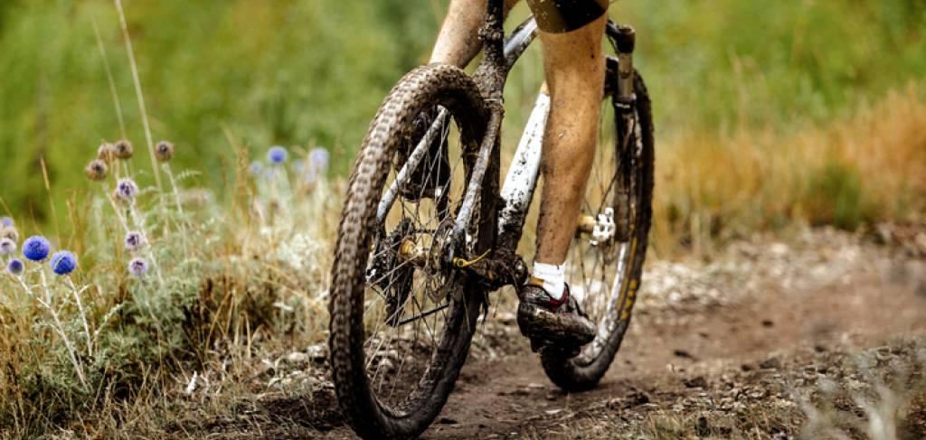 Mountain biker on the trail